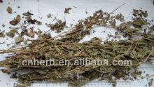 Dried Herba agrimoniae,Hairyvein agrimonia,Hairy agrimony,agri,Agrimonia pilosa,Xian he cao,Astringent,Stomach cancer medicine