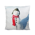 Beautiful female snowman cushion