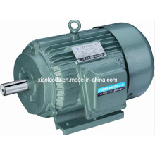 Three Phase Electric Induction Motor (NEMA standard)