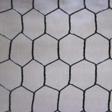 Good Galvanized Poultry Netting Wire Mesh