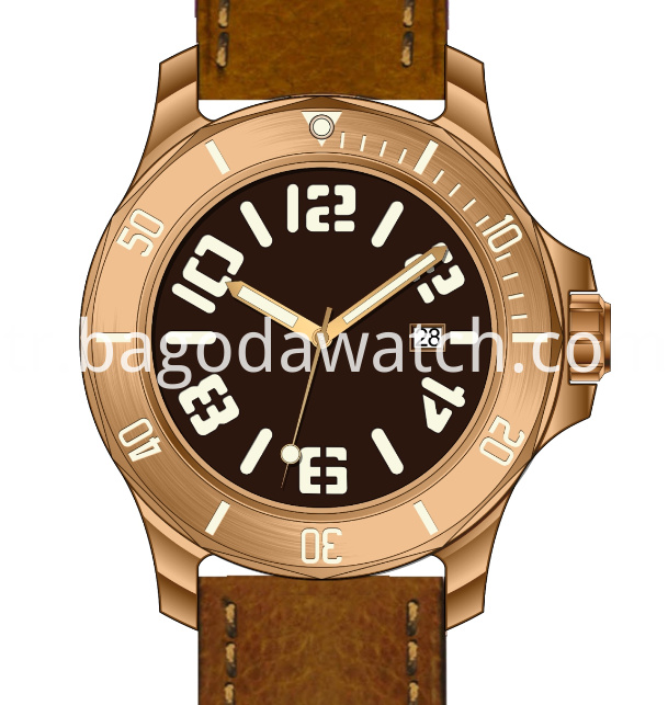 Bronze Case Watch