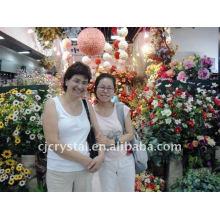 Tradutor intérprete hangzhou