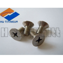 Gr5 titanium phillips screw