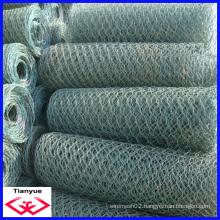Hot Dipped Galvanized Hexagonal Wire Netting (TYD-055)