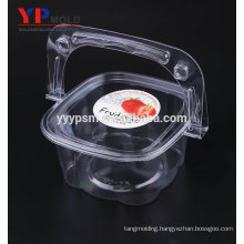 PET material with handle fully transparent package fruit box flower basket portable biscuit/cake box plastic injection mould