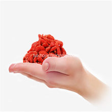 Ny Crop Konventionell Goji Berry