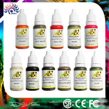 Permanent Makeup Pigment Ink Color Tattoo Micro Cosmetic Micropigmention,EVOLUTION Cosmetic Tattoo INK 12 PACK Permanent Makeup