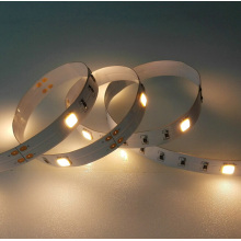 20LEDs/M CREE LED Flexible Strip
