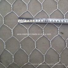 Maleficio. Malla de alambre / malla de alambre de pollo