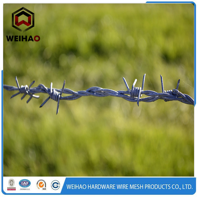 agriculture barbed fence