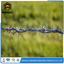 garden barbed  wire fence