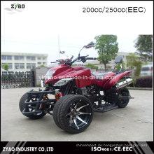 Japanische Quad Bike Sport ATV 250ccm EWG
