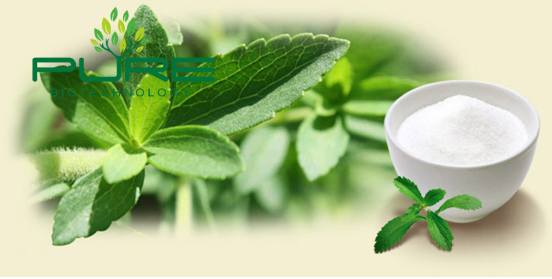 dry stevia leaves extract