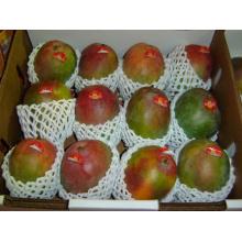 Emballage en plastique de mousse d'EPE d'emballage de tube de maille de catégorie comestible pour le fruit