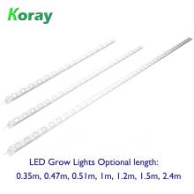 O diodo emissor de luz impermeável cresce as prateleiras claras da fábrica da planta plantadas