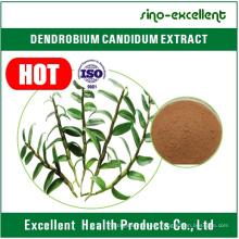 Pure Dendrobium Herba Dendrobii Extrakt