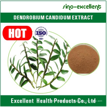 Dendrobium Nobile Extract with ISO Certificate