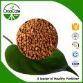 Vente en gros granulés NPK 15-15-15 Fertilisant composé