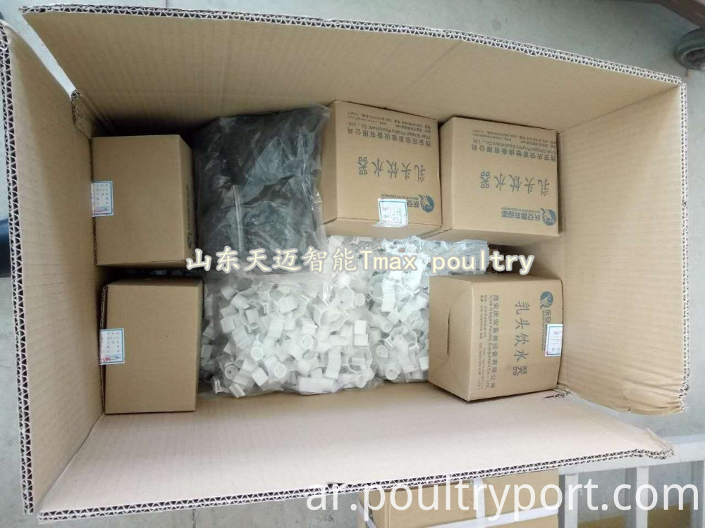 A type poultry equipment packing