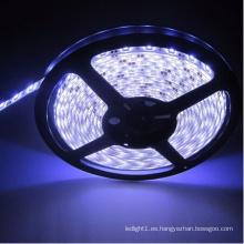 Tira de LED blanca Ce y Rhos 60SMD5050