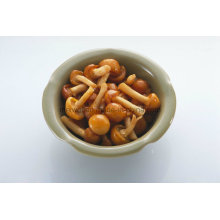 Health Food Canned Nameko Mushroom