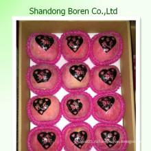 Фрукты свежие фрукты новые культуры свежие FUJI Apple из провинции Шаньдун