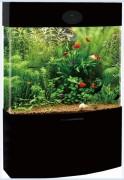 Acrylic Aquarium with Double Arc Shape