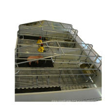 Design drawing plastic slat floor sow farrowing crates for pig farm