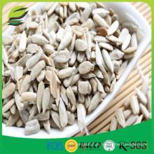 Sementes de girassol kernels