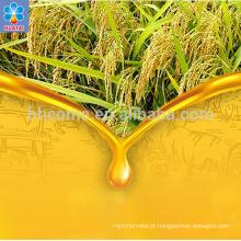 2018 China henan maior fabricante de máquina de bagaço de óleo de farelo de arroz