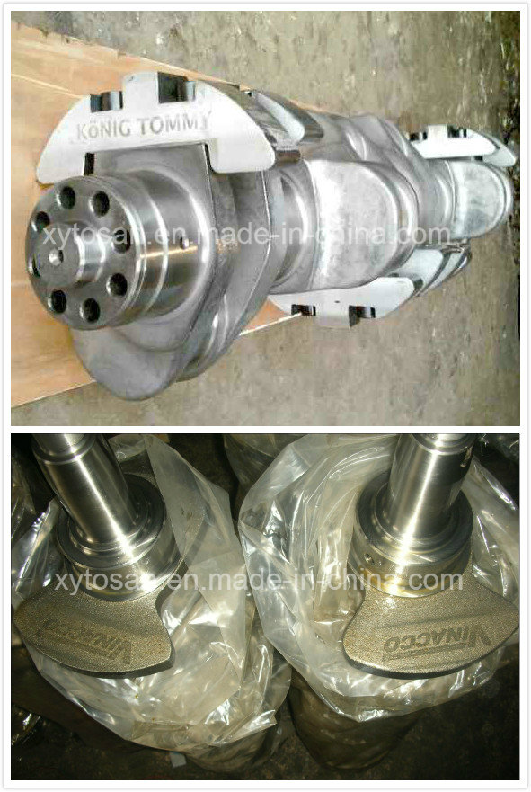 Crankshaft for Isuzu Engine 4be1/4bd1/4bc2/4hf1/4bb1/4bg1/4jb1/6bd1/6bg1