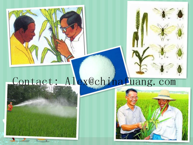 Insecticide 95%, 97%, 90%, 99%Tc CAS 120068-37-3 Fipronil