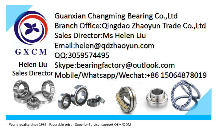 Chinese Factory 6300 Series 35*80*21mm Deep Groove Ball Bearing 6307 2RS