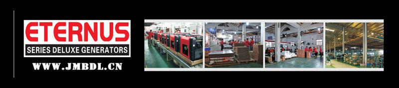 Diesel Generator Power Plant for Plaza (BD8E)