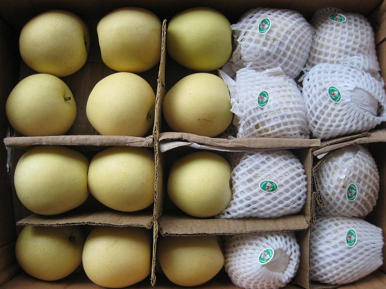 Top Quality Fresh Golden Pear/Crown Pear