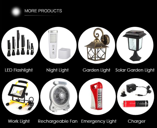 Professional Grade Outdoor LED Solar Garden Light Modern Design