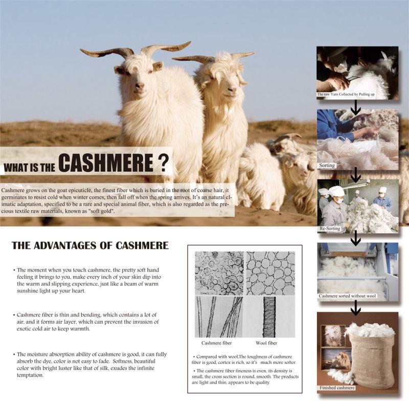 Lady's Fashion Cashmere Sweater 17brpv061