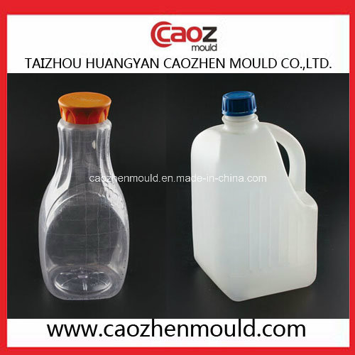 Unique Shape/ Plastic Bottle Blowing Mould