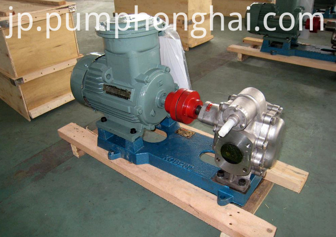 cast iron and stainless steel material gear pump