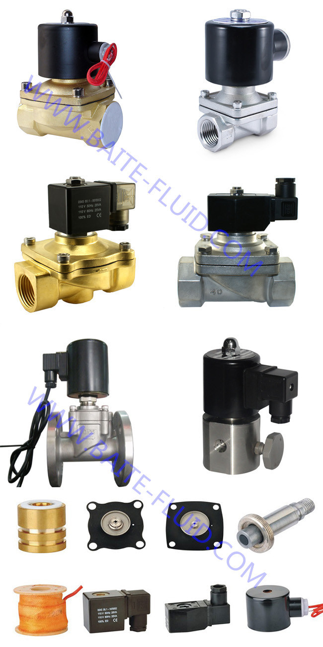 High Pressure Electric Control Electromagnetic 2 Way Plastic Direct Acting 4V310-10 Miniature Solenoid Valve