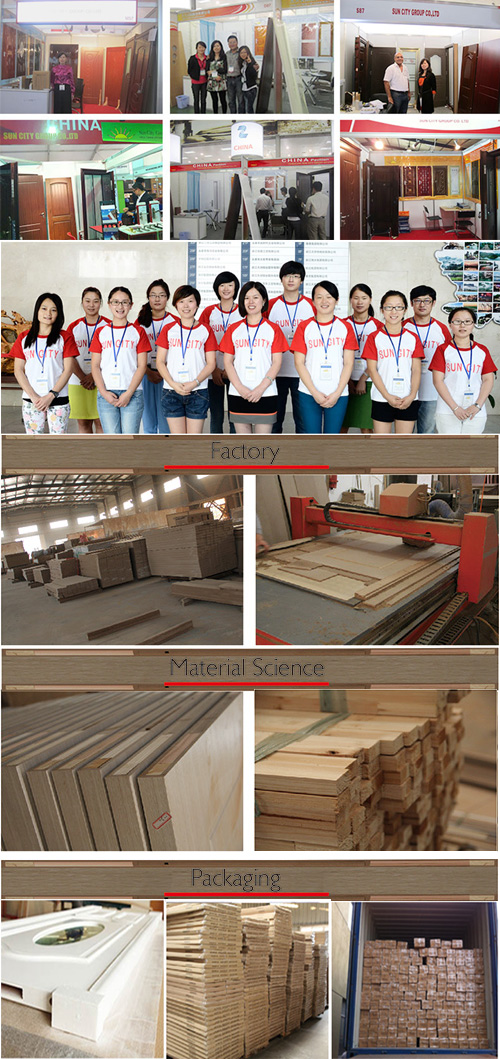 Economic Safety Wooden MDF Interior Wooden Door (SC-W050)