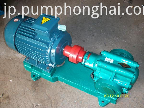 Cast Iron Wear-resistant Gear Pump