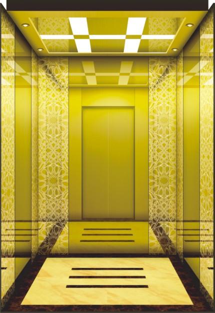 Customized Passenger Elevator with Fine Lift Car Decoration
