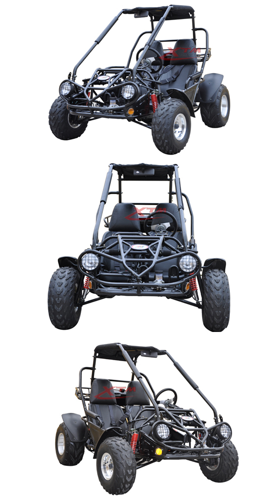 off Road Gas/Petrol 150cc 2 Seat Dune Buggy