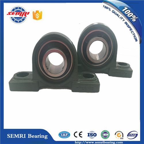 High Speed Pillow Block Bearing (UCP208) with High Performance