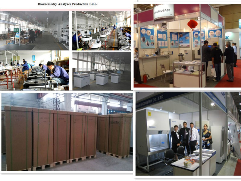 Biobase Mini Vertical Laminar Flow Cabinet with HEPA Filters