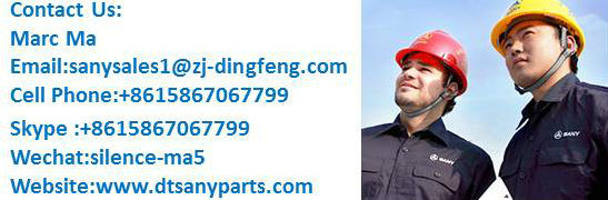 Top Brand Seal for 30t Sany Excavator From China