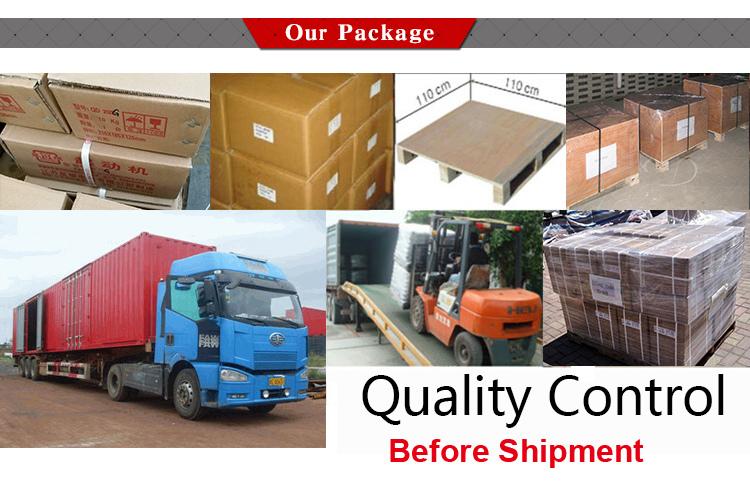 High Torque Starter Motors for Komatsu Lift Truck 128000997, 6008131420