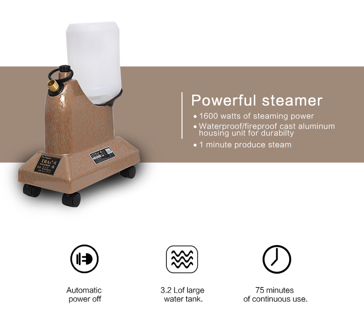 3.5L Water Capacity Laundry Steam Iron Industrial Powerful Garment Steamer
