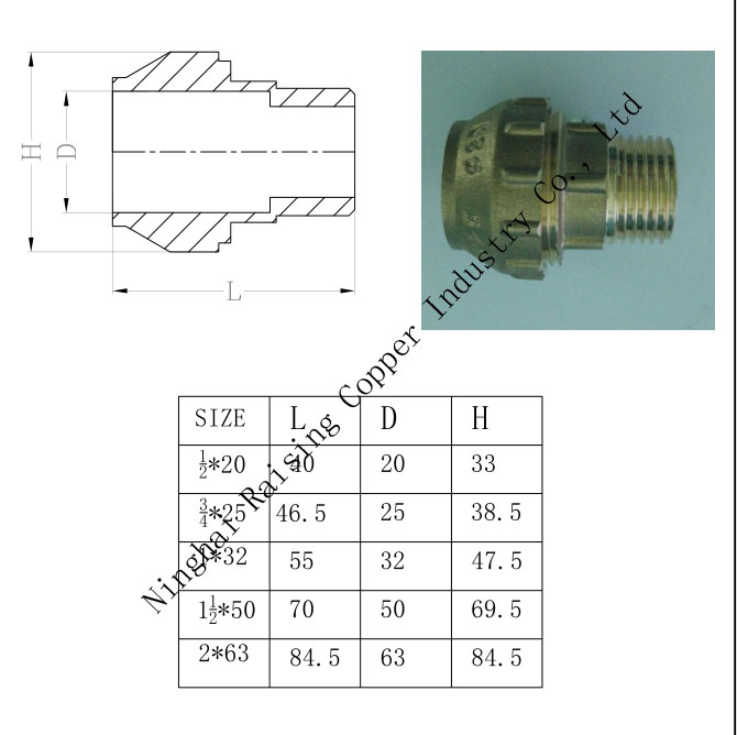 Brass Compression Male Adaptor
